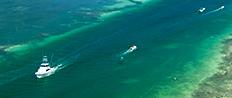 Key West Diversions